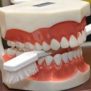 nuo-ko-genda-dantys2